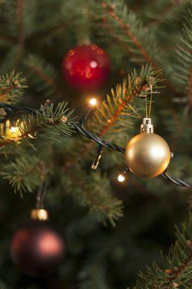 christbaumkugeln_DSC8637